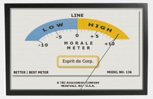 fnl-framed L-H meter